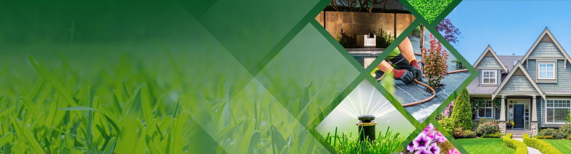irrigation-spring-service